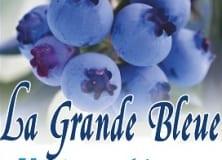 bleuetieregranbyla-grandebleueaffiche222x160acfcropped