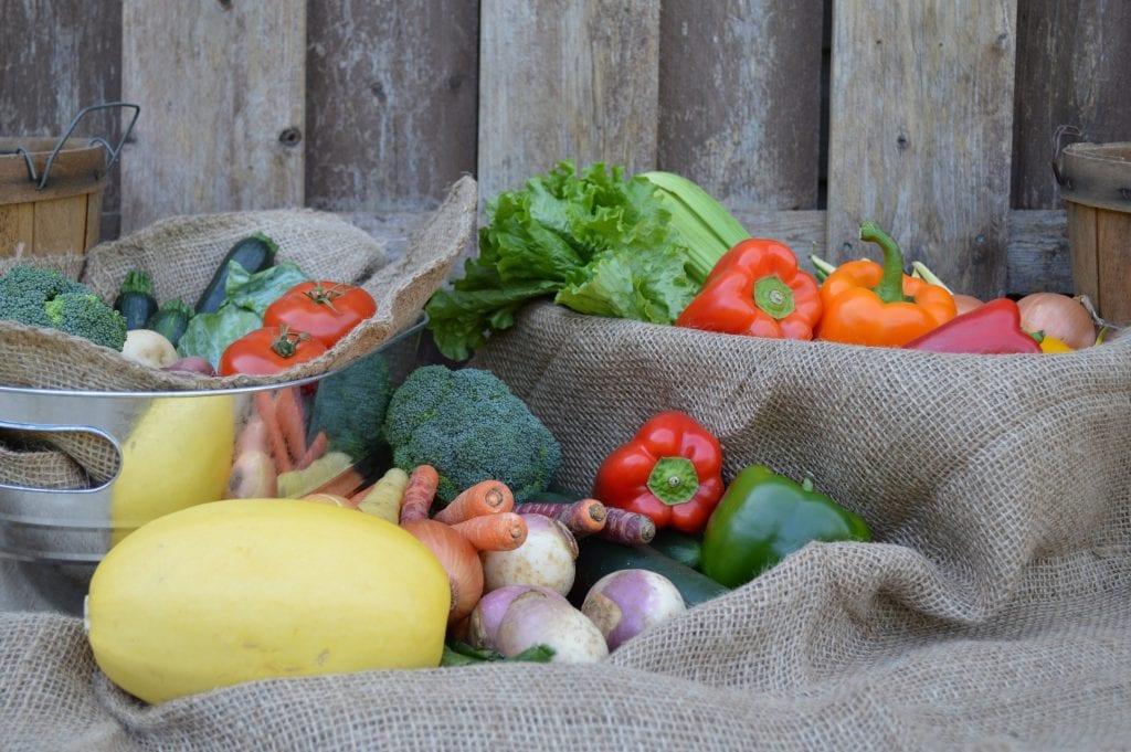 Légumes Terre Urbaine